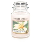 Champaca Blossom Large Candle